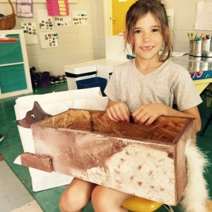 Abigail made a box thats a fox!